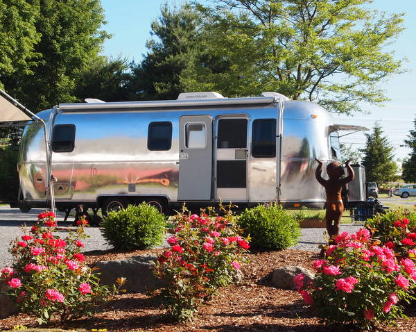 Blooming Airstreams