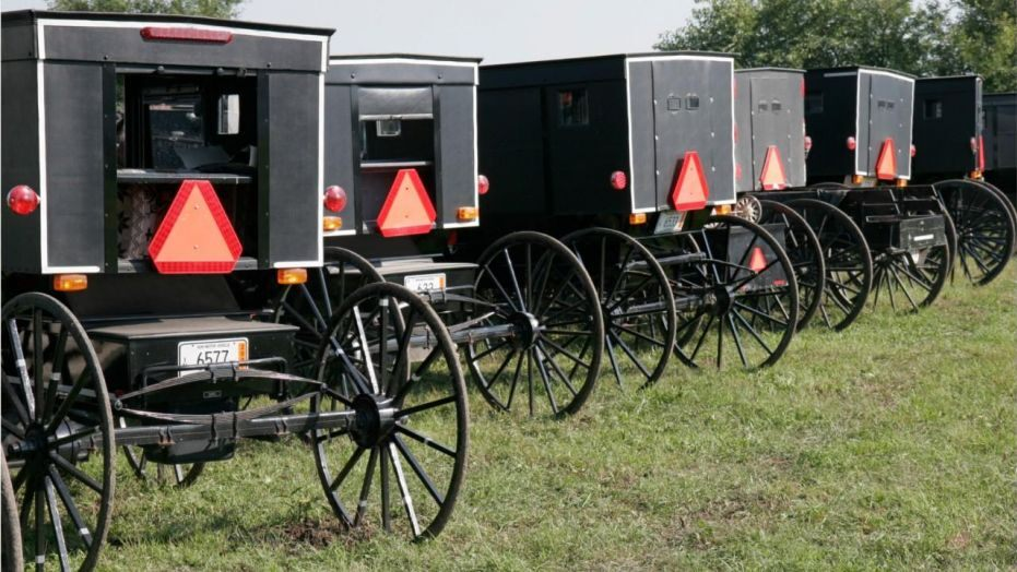 SFAC Amish buggies